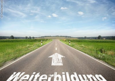 Online-Workshop: RDi – Fluch oder Segen?